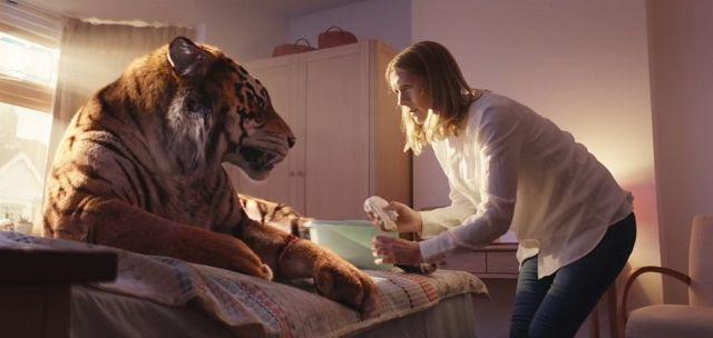 tigre wwf