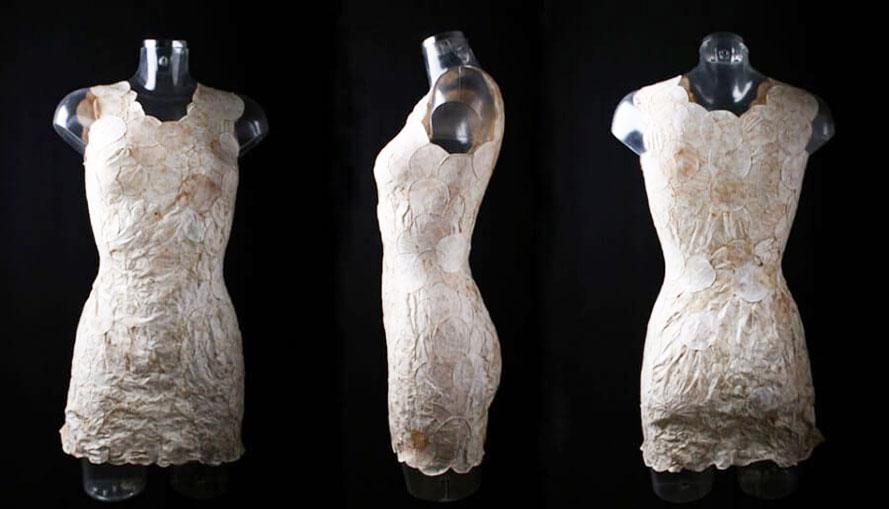 robe de champignons
