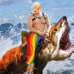 Vladimir Poutine sur un requin