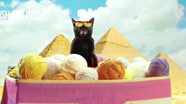 Luck Black Cat