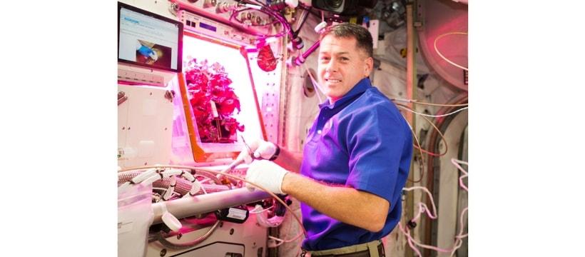 Cultiver des plantes dans l'espace
