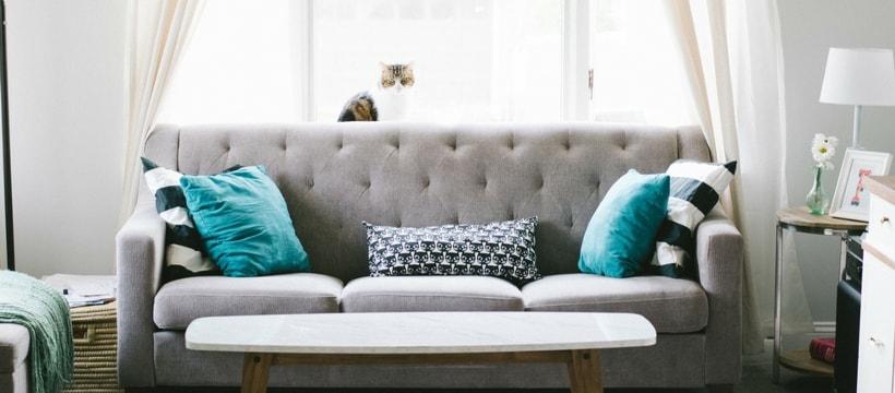 Sofa avec un chat dessus