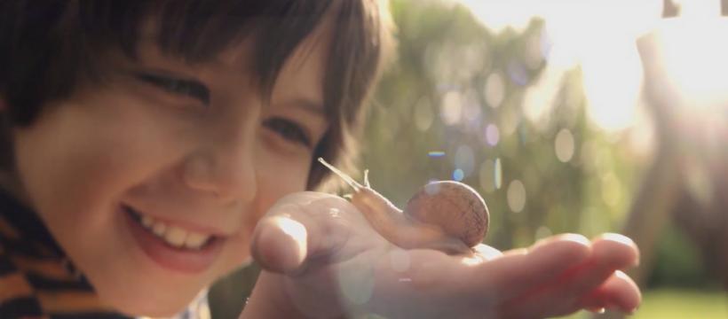 un enfant tient un escargot