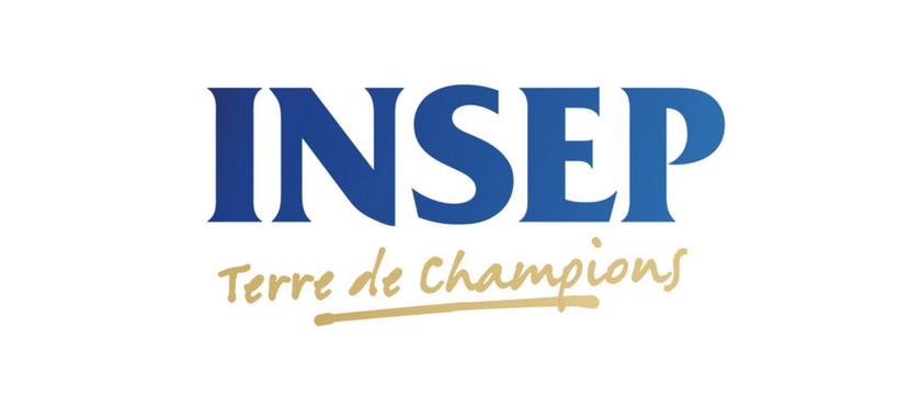 logo insep