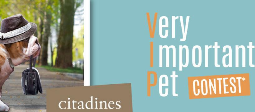 affiche citadines pet contest