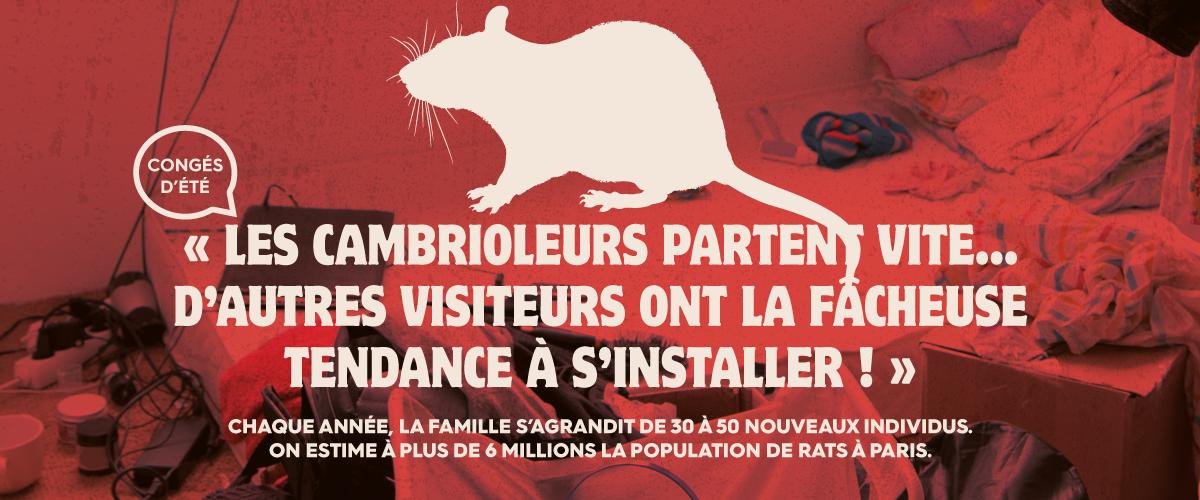 CS3D affiche rat contre les nuisibles