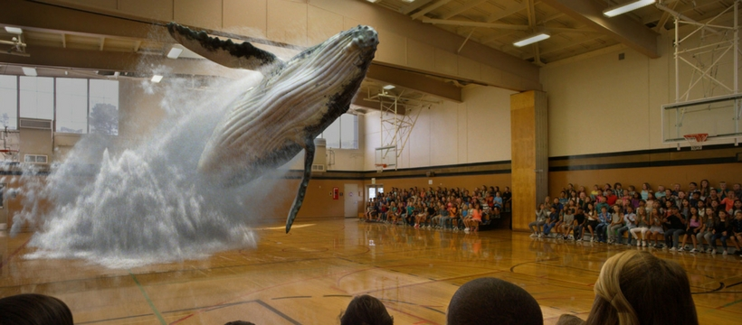 magic leap baleine