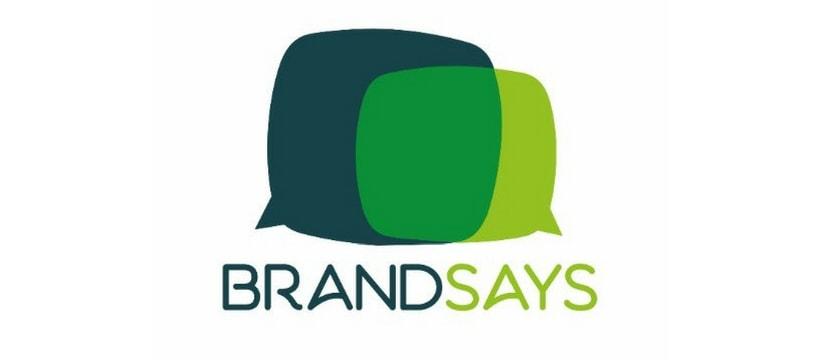 logo brandsays