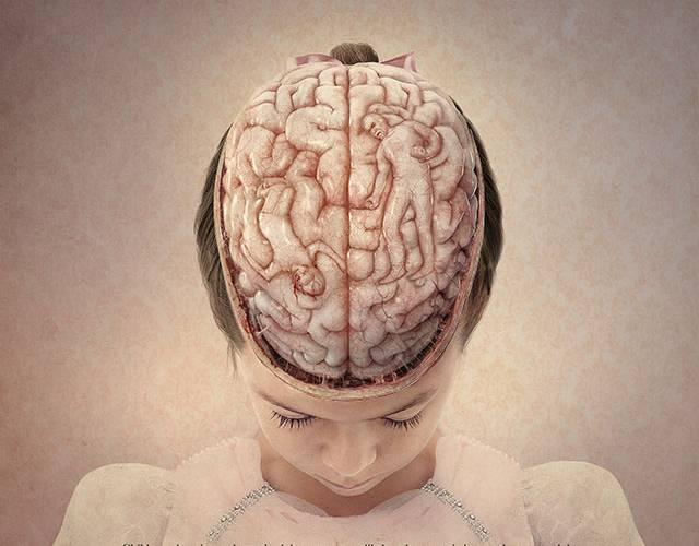 cerveau dun enfant marque par la violence
