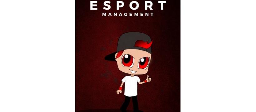 logo desport management