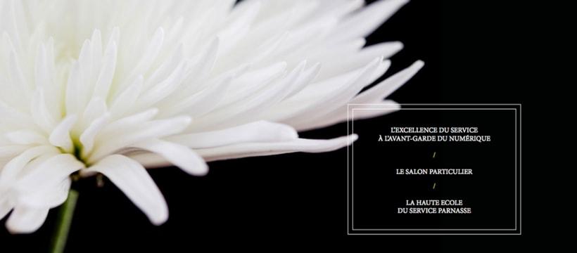 Fleur affiche du cercle parnasse