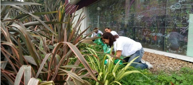La terrasse végétalisée de chez Nexity