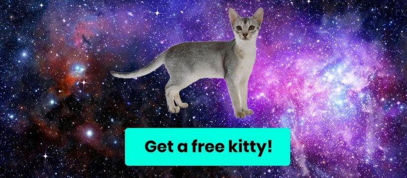 Une illustration provenant de CryptoKitties, le réseau qui permet de gagner de l'Ether grâce à des chats virtuels