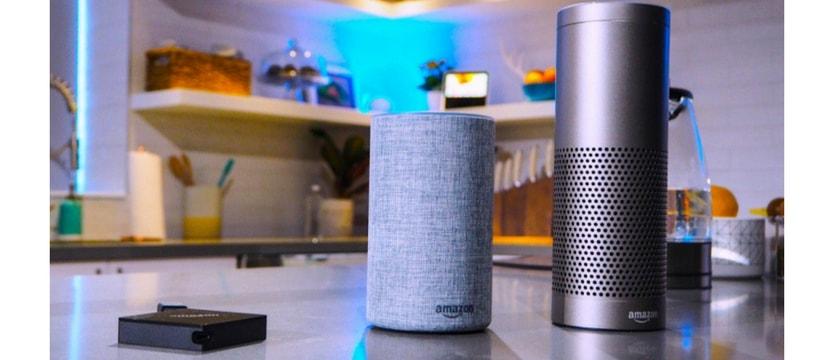 Amazon Echo assistant vocal