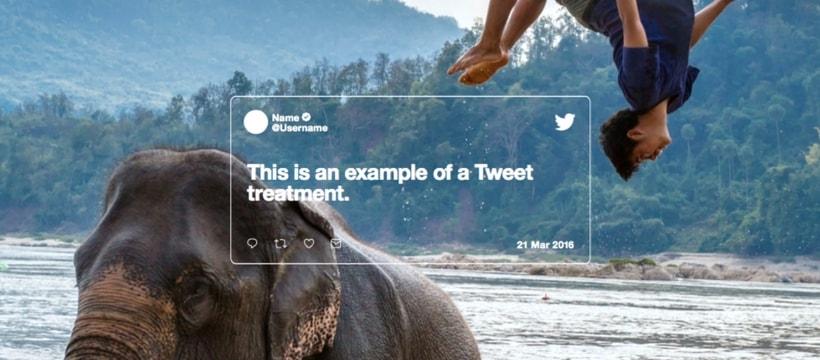 enfant sautant d'un éléphant