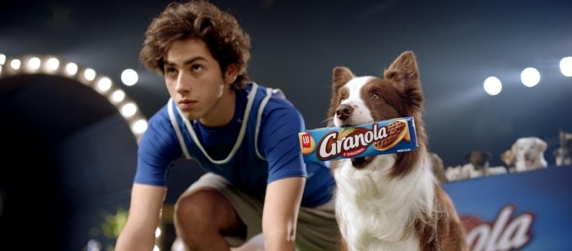 concours dagilite canin avec un humain