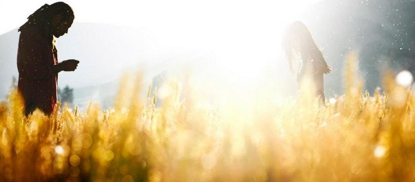photographie d'un champ en plenoptique
