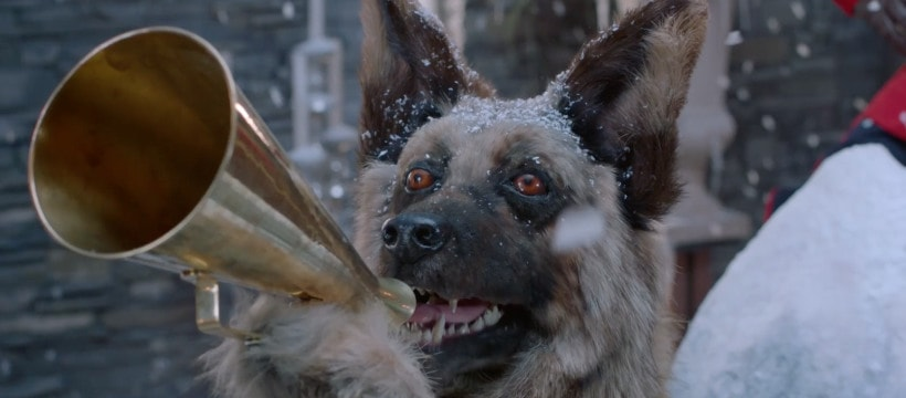 chien avec un porte voix