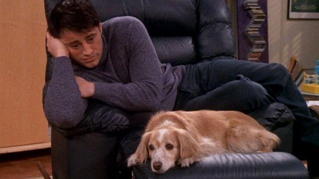 Une scène de la série Friends, où Joey déprime avec un chien