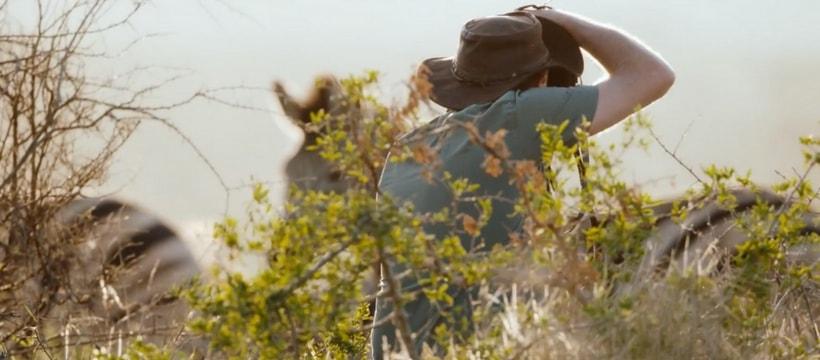 photographe qui prend un zebre en photo