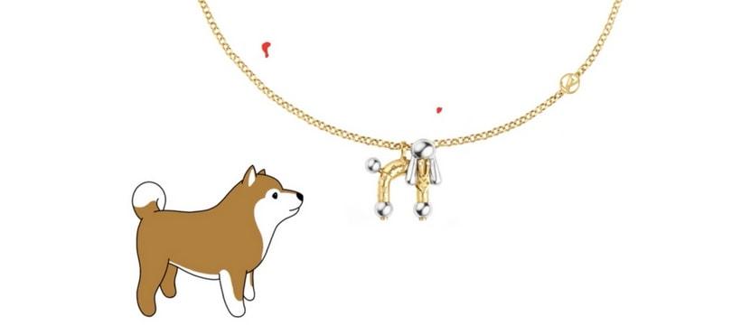 shiba avec un collier louis vuitton