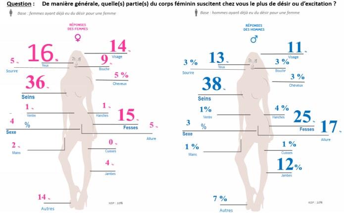 infographie parties du corps
