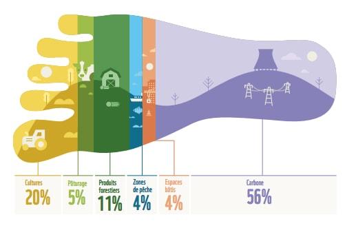 infographie empreinte écologique