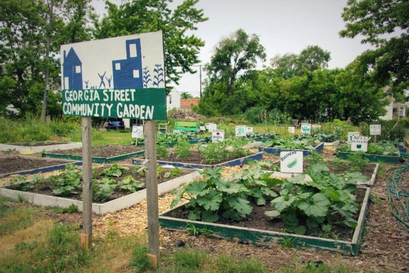 Detroit : Mark Covington transforme une friche en jardin ...