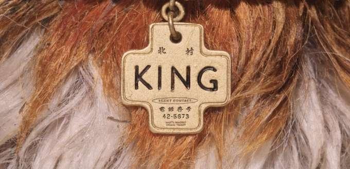 collier de chien
