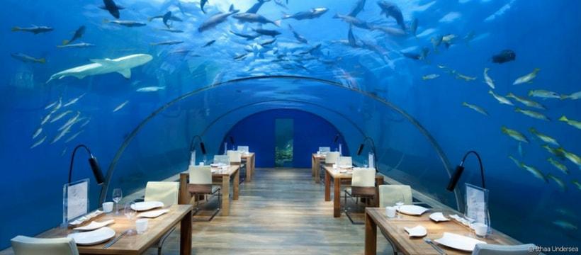 Le restaurant ITHAA propose de manger sous un aquarium