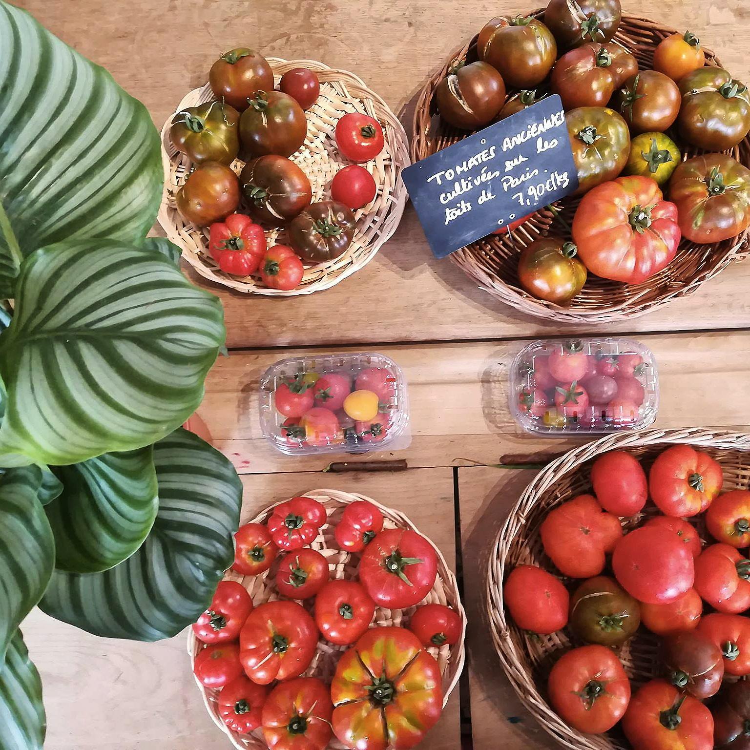 Des tomates issues de l'agriculture urbaine en vente au Testeur de commerce