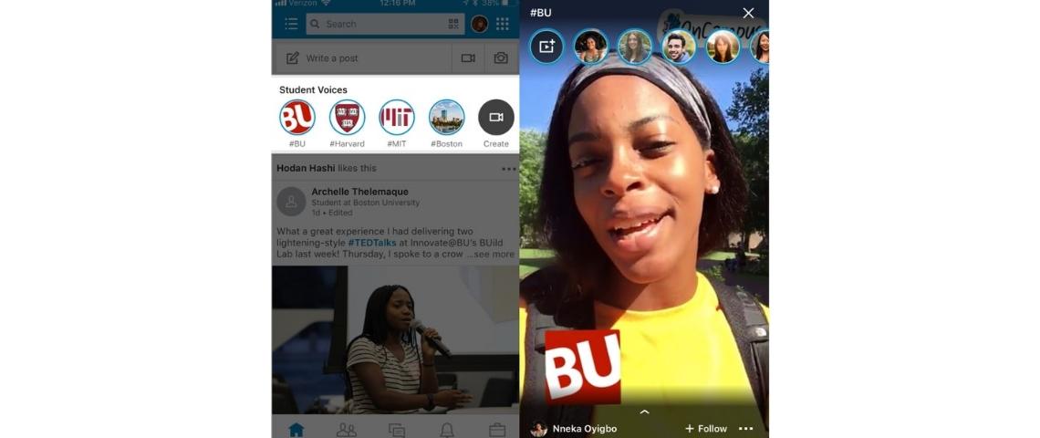 Student Voices LinkedIn