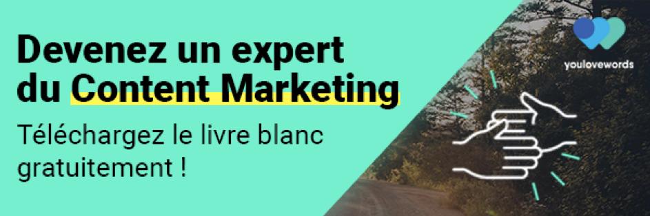 une bannière pour télécharger un livre blanc sur le content marketing