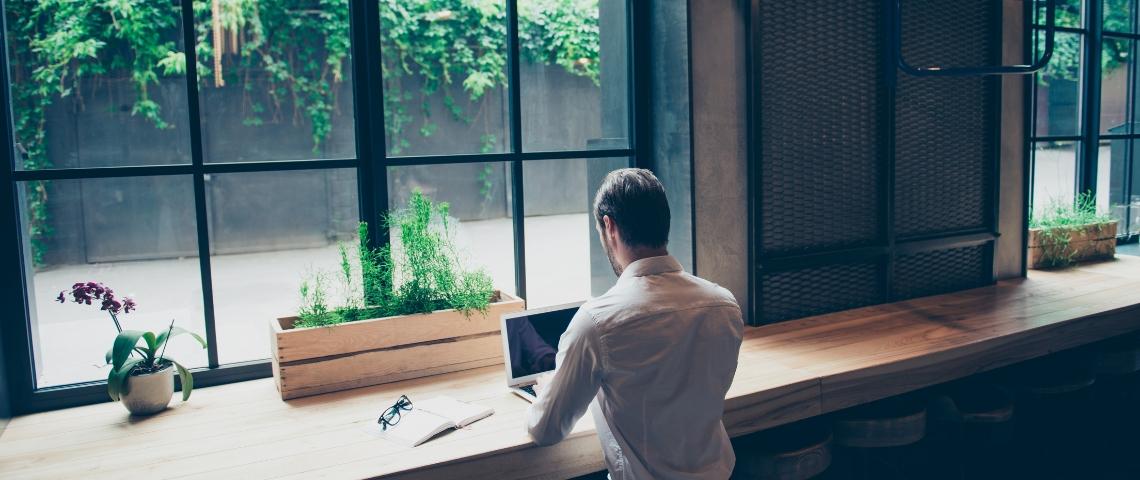 Un homme de dos en train de travailler sur un ordinateur avec des plantes