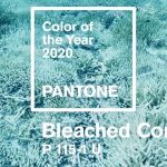 Jack Huei color of the year Bleached Coral
