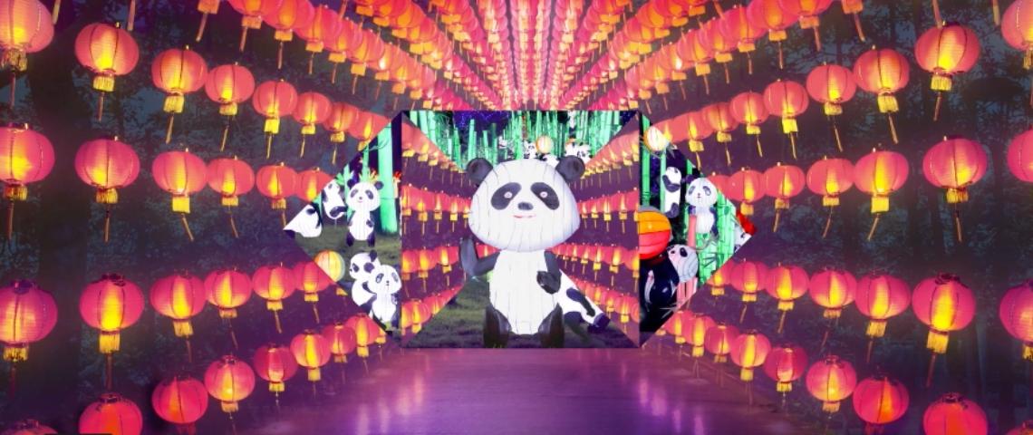 Image d'un panda sur un écran