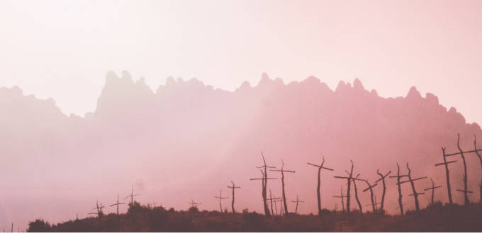 paysage rose avec des arbres