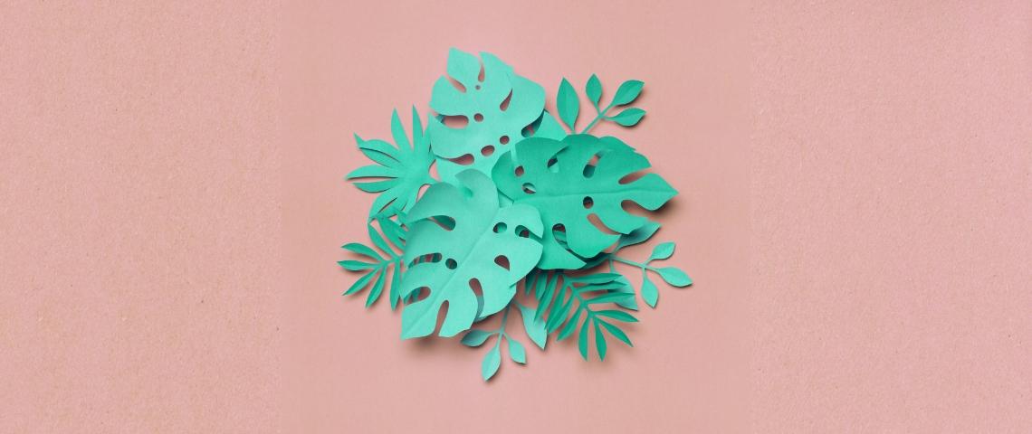 feuilles vertes sur fond rose
