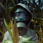Personne en masque à gaz portant un maïs