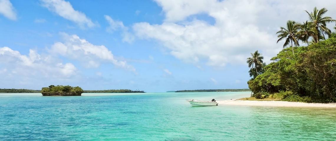 Une île paradisiaque avec des palmiers