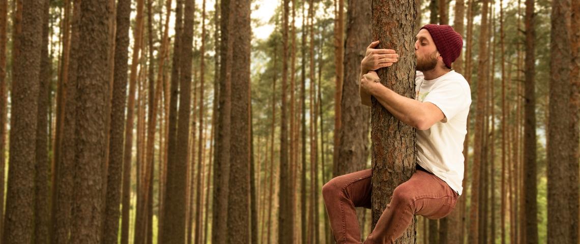 Ecosophie : et si la nature nous apprenait à innover  ?