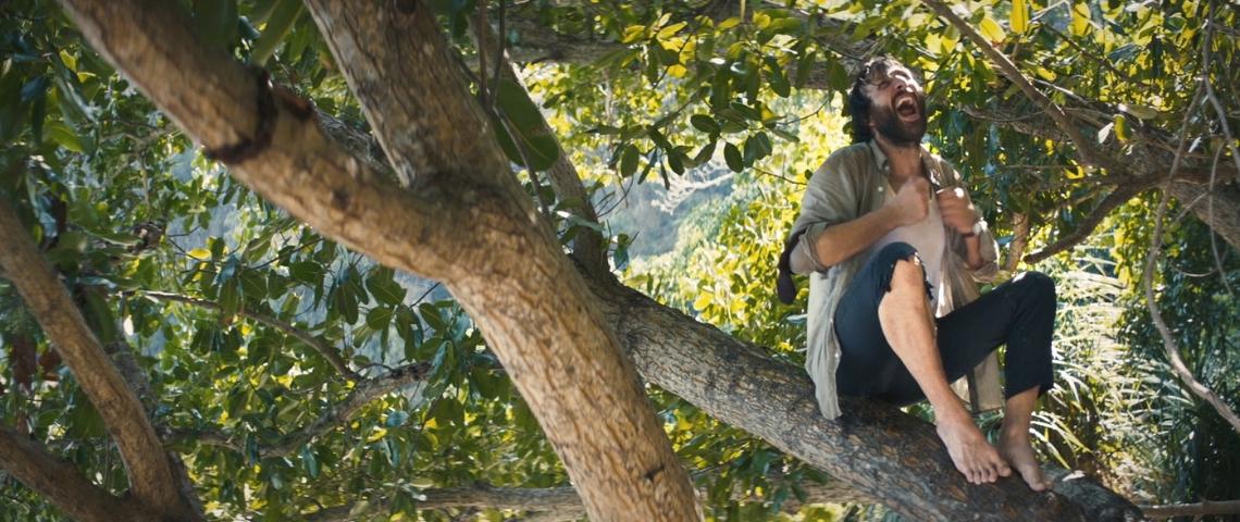 Un homme dans un arbre en train de crier