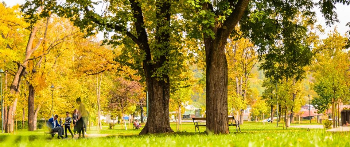 Un parc au printemps