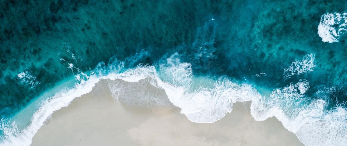 un bord de mer