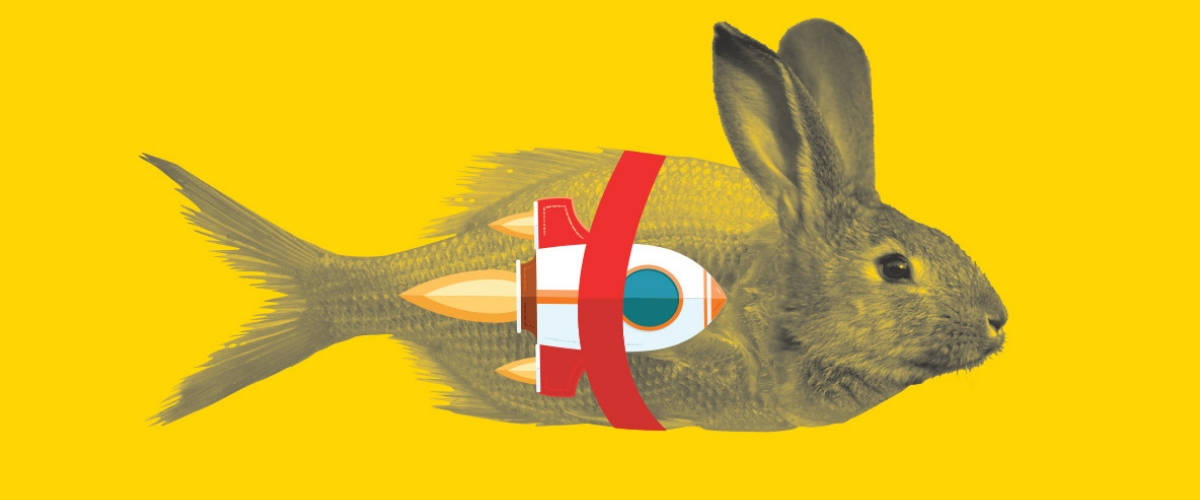 Un dessin d'un animal mi-poisson, mi-lapin