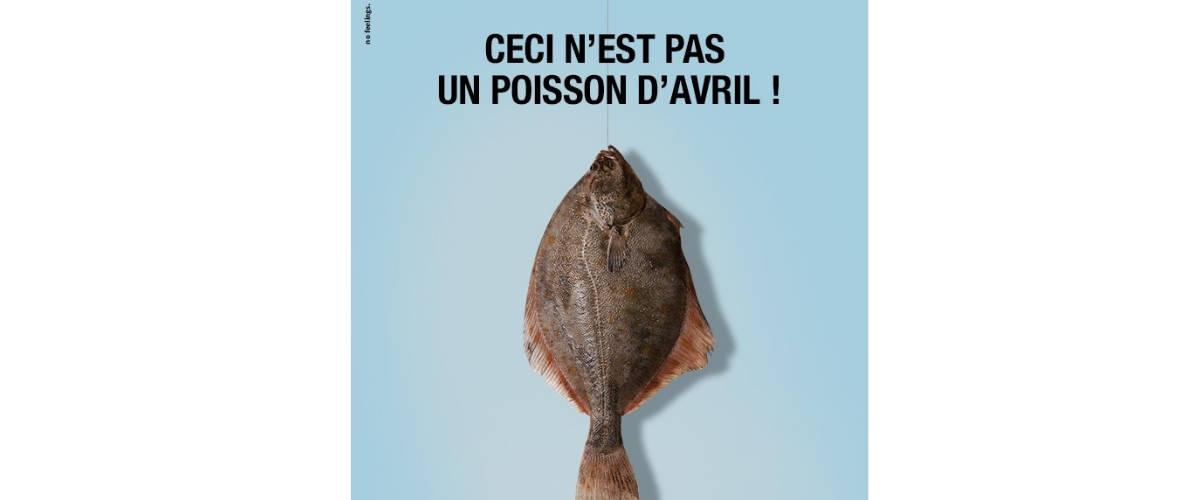 PromerOcean se joue du poisson d'avril