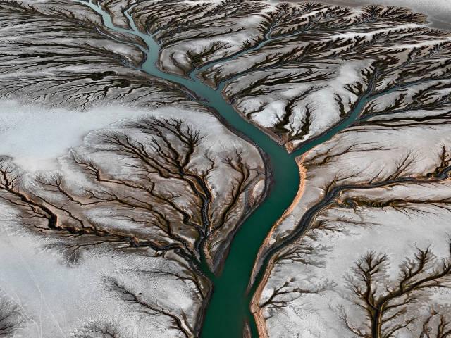 image d'une rivière en forme d'arbre