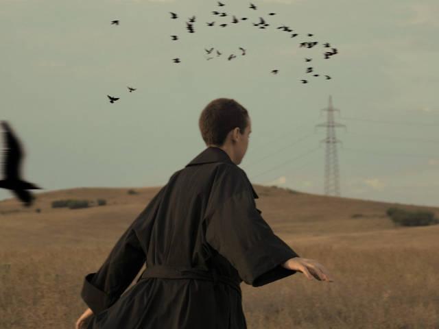 une personne court avec des oiseaux dans un champ