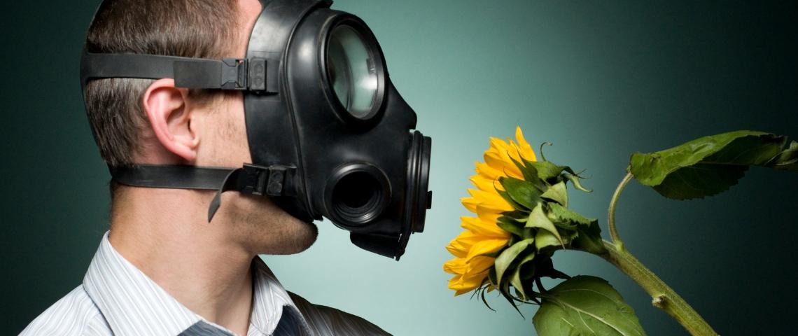 Un homme avec un masque à gaz en train de respirer un tournesol