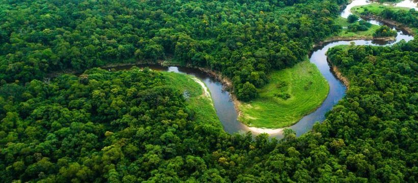 fleuve et forêt vu du ciel